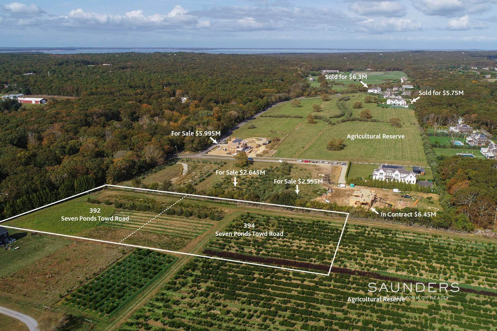 4. Land for Sale at Estate-Quality Parcels Overlooking 48 Acre Reserve 394 Seven Ponds Towd Road, Water Mill, Southampton Town, NY 11976