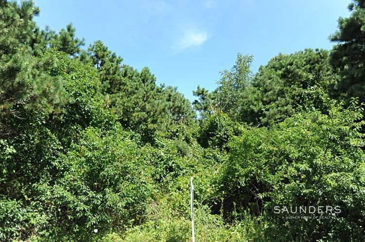 4. Land for Sale at Build To Suit, South Of The Highway Southampton, Southampton Town, NY 11968